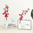 Metal Wire Flower Note Rack + Ceramic Vase Hydroponic Plant Container US