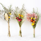 Natural Dried Flower Gypsophila Bouquet Diy Wedding Party Floral Art-home Decor