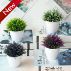 Artificial Plants Bonsai Plastic Potted Simulation Flower Grass Plant Home Decor