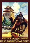 3557.China French POSTER.Asian.Orient Camel.Home interior design art.Office