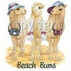 NEW KIDS CHILDRENS BABIES T-SHIRT - Beach Bums Camels