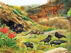 5979 Animals nature country scene POSTER.Interior design.Decor wall Art