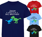 PERSONALISED I'M GOING TO BE A BIG BROTHER DINOSAUR T-SHIRT TSHIRT BOYS KIDS