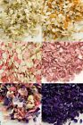 Natural Dried Delphinium Petals Confetti Wedding Party Anniversary