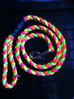 Neon Rainbow Dog Lead, Slip or Clip, Bright, Green Yellow Orange + Pink or Blue