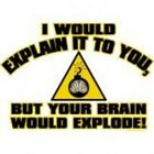 NEW FUNNY T-SHIRT - I would explain it to you but your brain would explode!