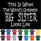 Worlds Greatest BIG SISTER Funny Birthday Christmas Gift Youth or Adult TShirt