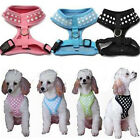 Pet Dog Cat Puppy Cute Vest Soft Walking Mesh Harness Adjustable Brace Cloth New