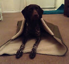 Dog Burrow Bag, Burrow Bag, Snuggle Sack, Dog Snuggle Sack, Dog Bed, Dog Blanket