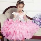 NEW Flower Girls Wedding Party Pageant Prom Ball Tulle Princess Formal Dress 2-9