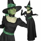 Ladies Long Witch Costume + Hat- Womens Witches Halloween Fancy Dress Outfit
