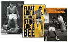 Muhammad Ali 3 Pack Deal Poster Bundle 61x91.5cm