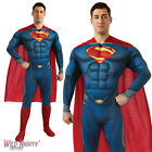 "FANCY DRESS COSTUME ~ MENS DELUXE MAN OF STEEL SUPERMAN MUSCLE CHEST SIZE 38""-46"