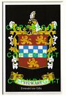 STEWART Family Coat of Arms Crest - Choice of Mount or Framed
