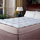 "233 TC Cotton Cover 2"" Featherbed White"