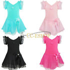 New Girl Fancy Leotard Dress Ballet/Dance/Gymnastic Tutu Skirt Dancewear Costume