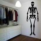 Skeleton Bones Wall Sticker Decor Design Human Body Science Anatomy Transfer R45
