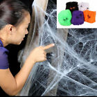 Spider Web Home Party Bar Decor Stretchy Cobweb W/ 2 Spider Halloween Props