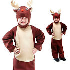 TODDLER 2-3 CHILDRENS KIDS BOYS GIRLS REINDEER RUDOLPH FANCY DRESS COSTUME