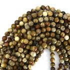 "Faceted Petrified Wood Agate Round Beads 15"" Strand S1 4mm 6mm 8mm 10mm 12mm"