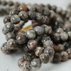 Natural Grade A Fossil Jasper Gemstone Round Beads - 4, 6, 8, 10mm Sizes - 16""