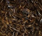 Premium Freeze Dried Crickets- Case Special 10lbs: 10 (1lb) bags
