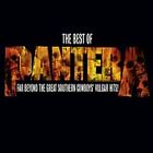Pantera - Reinventing Hell (The Best of /Parental Advisory, 2003)