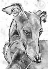 Whippet Greyhound PRINT from Original Watercolour Dog Hound Painting by JOSIE P
