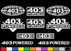 10 DECAL SET 403 CI V8 POWERED ENGINE STICKERS EMBLEMS 6.6 T/A OLDS VINYL DECALS