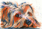 YORKSHIRE TERRIER Dog PRINT fromORIGINAL WATERCOLOUR Painting Picture by Josie P