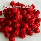FRENCH Burnt peanuts BULK deal - candy coated peanut DELICIOUS FREE SHIPPING