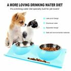 Stainless Steel Cat Dog Double Puppy Pet Water Food Feeder Dish Bowls Stand AA