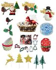 CHRISTMAS CAKE DECORATIONS - Xmas Snowman Santa Robin Pick Topper Figures Holly