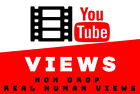 Youtube Services   viêws   Real & High Quality