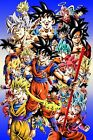 Dragon Ball Super Poster Goku All Forms SSJ God Blue Ultra Instinct 11x17 13x19