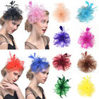 Vintage Flower Feather Beads Mesh Corsage Hair Clip Fascinator Bridal Headwear