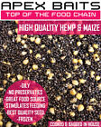 Prepared Cooked Hemp Seed & Maize Carp, Tench, Bream Fishing Particle, Spod Mix