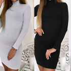 New Women Bodycon Turtleneck Knitted Sweater Dress Autumn Winter Jumper Knitwear