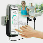 Arm Band Outdoor Sport Running Riding Cover Case Bag For iPhone 6 8 7 Plus-Black