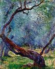 Study Of Olive Trees By Claude Monet Painting Artwork Paint By Numbers Kit DIY