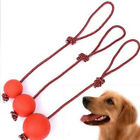 Rope Handle Pet Puppy Chew Toys Solid Rubber Ball Pet Puppy Toys Dog Chew Toy