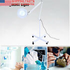 5x Diopter Magnifying Floor Stand Lamp Magnifier Glass Gooseneck Light