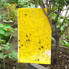 Wholesale Strong Sticky Fly Mosquito Trap Paper Catch Fruit Flies Insect 20x15cm