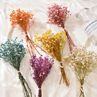 Mini Gypsophila Bouquet Natural Dried-flowers Diy Home Wedding Party Decoration