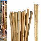 Heavy Duty Strong Bamboo Canes Garden Plant Support Trellis Pole Stake Sticks