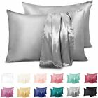 2 Piece Luxury Home Collection Satin Pillow Case Available All Colors Queen Size