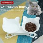 Non-slip Cat Double Bowls w/Raised Stand Pet Dish Food Dog Bowl NEW Feeder R6Y1