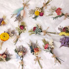 Real Flowers Mini Natural Dried Flower Bouquet Wedding Home Decoration Creative