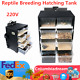 NEW Transparent Breeding Box Insect Spider Turtle Feeding Cage with Hygrometer