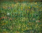 "Vincent Van Gogh- Patch of Grass  - 20""x26""  Art on Canvas"